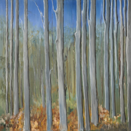 Forest by Sue Needham
